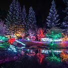 Christmas Lights at the Japanese Gardens by toby snelgrove  IPA
