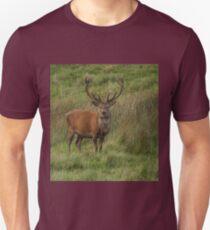 Stag Night? Unisex T-Shirt