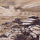 St Breward's, Bodmin Moor by Barnaby Edwards