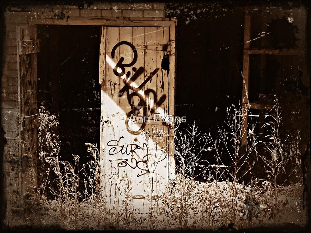 Open Doors by Ann Evans