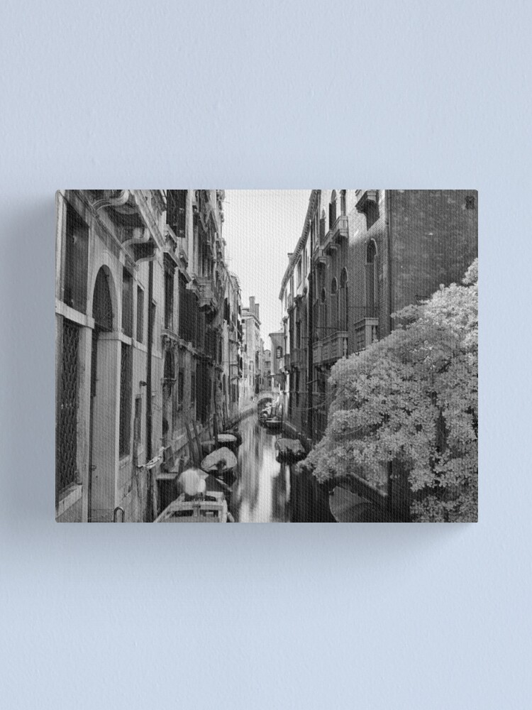 Alternate view of Down The Lane Canvas Print