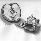 Murex Shell and Dried Apple by Tom McCleary