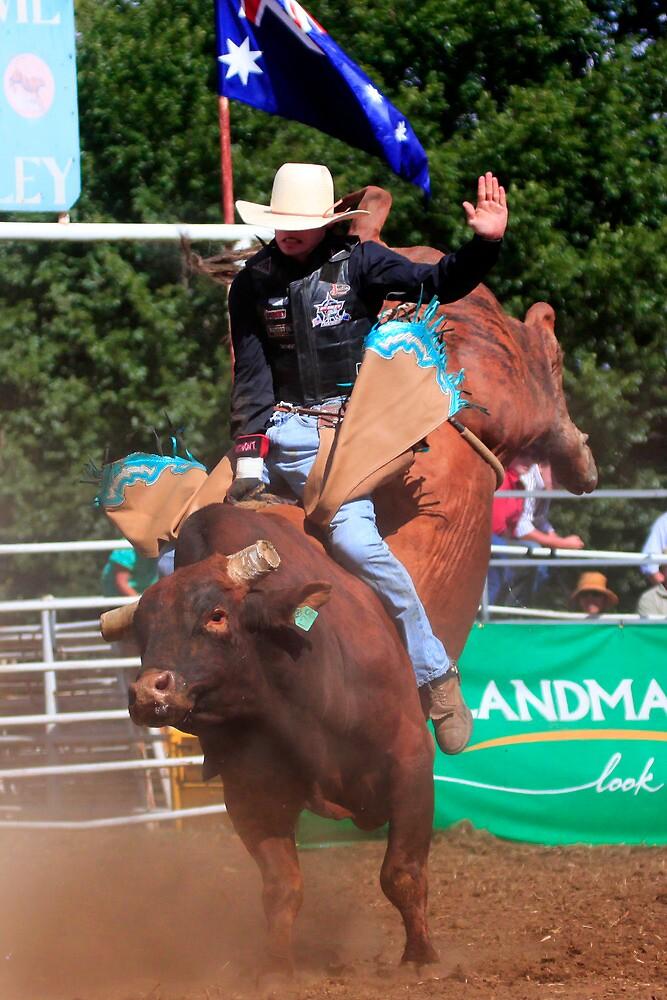 Rockley Bull by Ken Boxsell