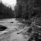 McDonald Creek, Glacier N.P.   by Rodney Johnson