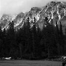 Mt. Brown, Glacier N.P. by Rodney Johnson