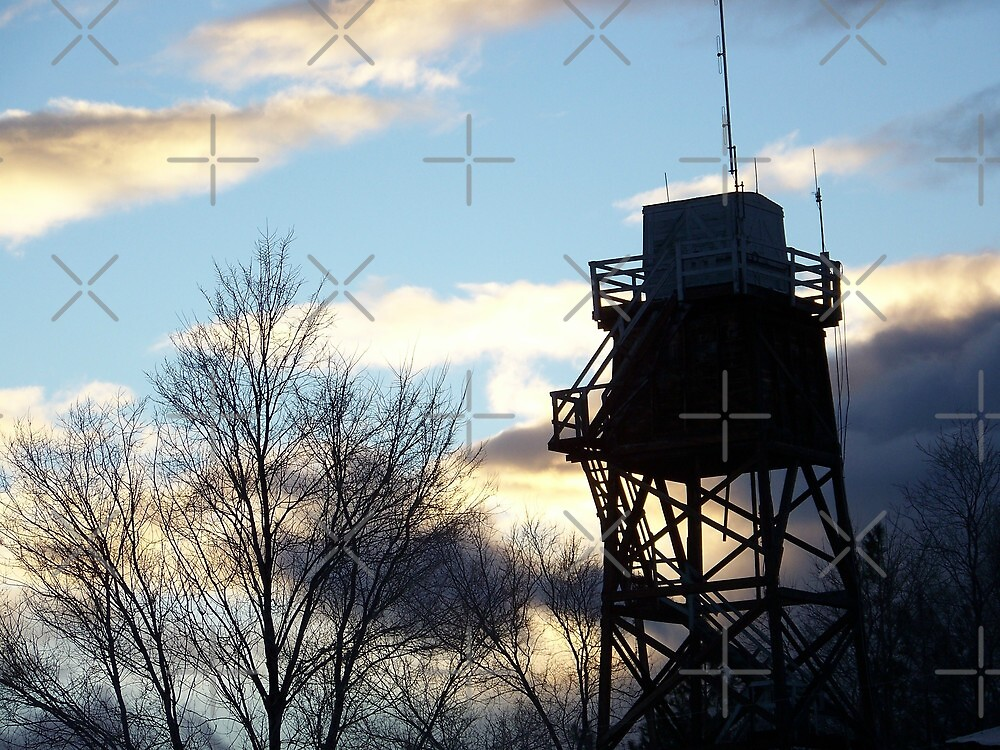 Lookout Tower by Betty  Town Duncan