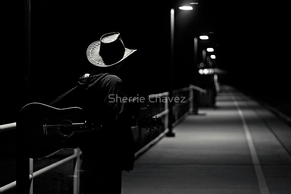 The Traveler by Sherrie Chavez