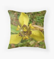 Who painted this beauty Throw Pillow