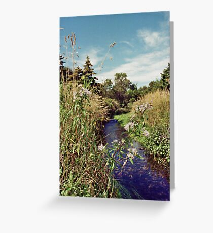 One Fine Summer's Day Greeting Card