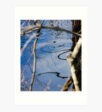 Reflection 02- Pine Barrens, NJ Art Print