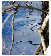 Reflection 02- Pine Barrens, NJ Poster