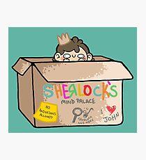 Sherlock's Mind Palace Photographic Print
