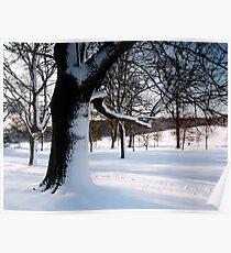 Winter Oak 2 Poster