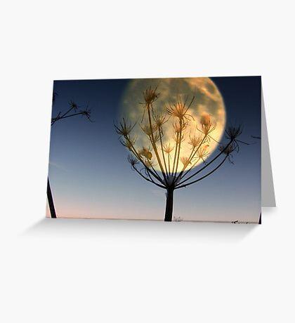 Beacon Of Light Greeting Card