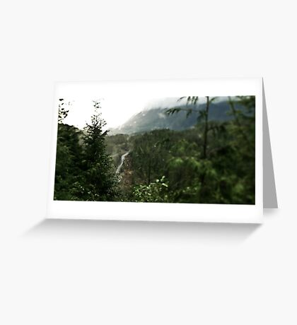 Forest valley road Greeting Card