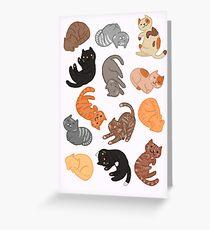 Katzen und Katzen und Katzen Grußkarte