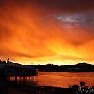 bushfire smoke enhanced the sunset by gaylene