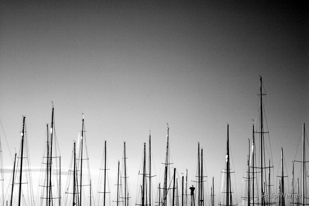 Forest of Masts by Philip Werner