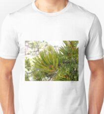 Pine Needles T-Shirt
