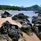 Rock Beach by ApeArt