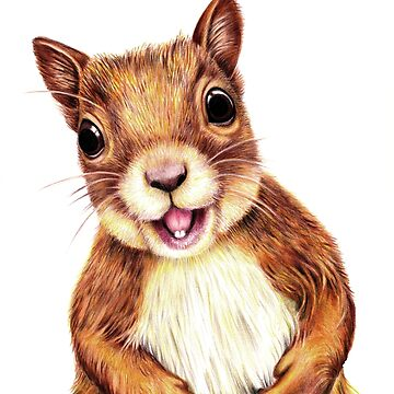 Seamus the squirrel says hello by mags0412
