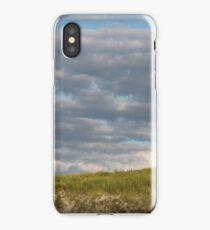 Beach Clouds iPhone Case