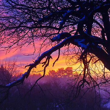 Fantasy Sunrise by colorfulbundles