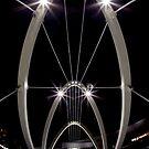 Loop the Loop by Travis Easton