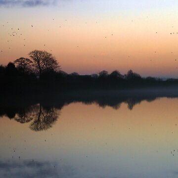 Misty Sunset by spottydog06