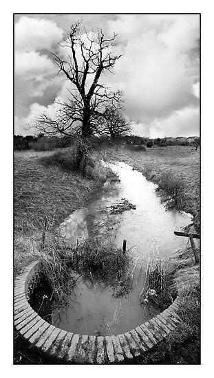 Purwell Fields No. 2 - (Hitchin, Hertfordshire) - Black & White Version by MoGeoPhoto