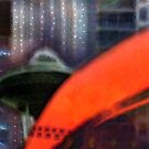 Urban Lights by Elizabeth Bravo