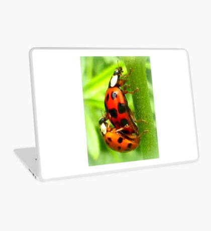 Love is in the air Laptop Skin