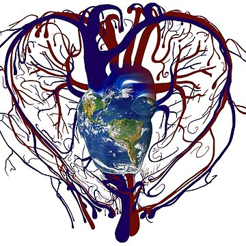 """Anatomical Kind """"Earth Heart"""" Medical Circulatory Get Well Kindness by worn"""