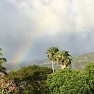 Maui Rainbow by EricaRobbin
