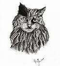 Cat Sketch by Martina Fagan