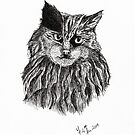 Cat Sketch by Martina Fagan