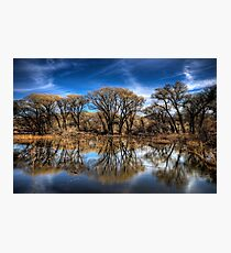 Willow Creek Cove Photographic Print