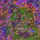 Abstract magick cat by blackhalt