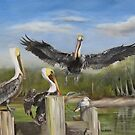 Three Pelicans And A Seagull by Phyllis Beiser