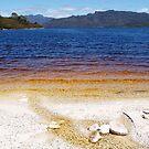 Lake Pedder by CezB