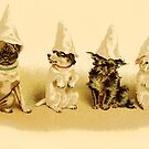 PARTY DOGS by Tammera
