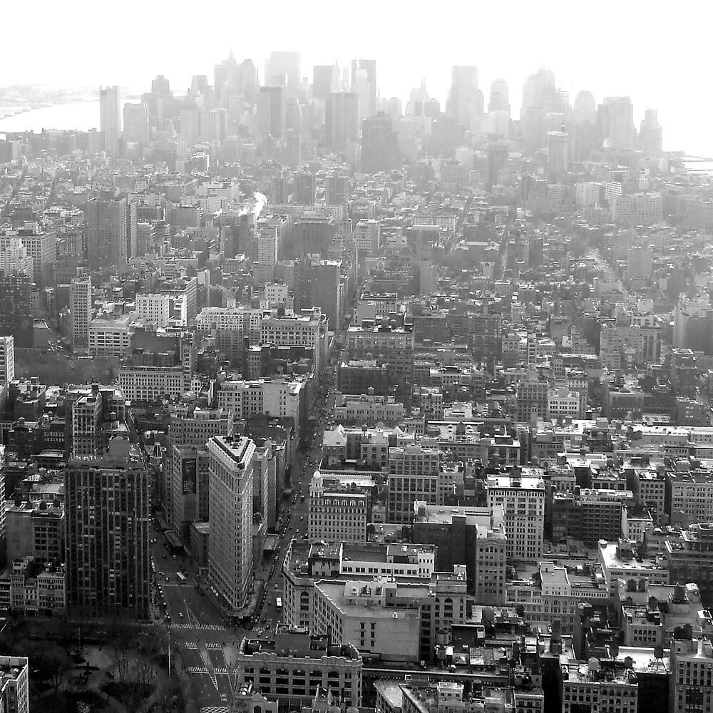 Manhattan Mist by mattslinn