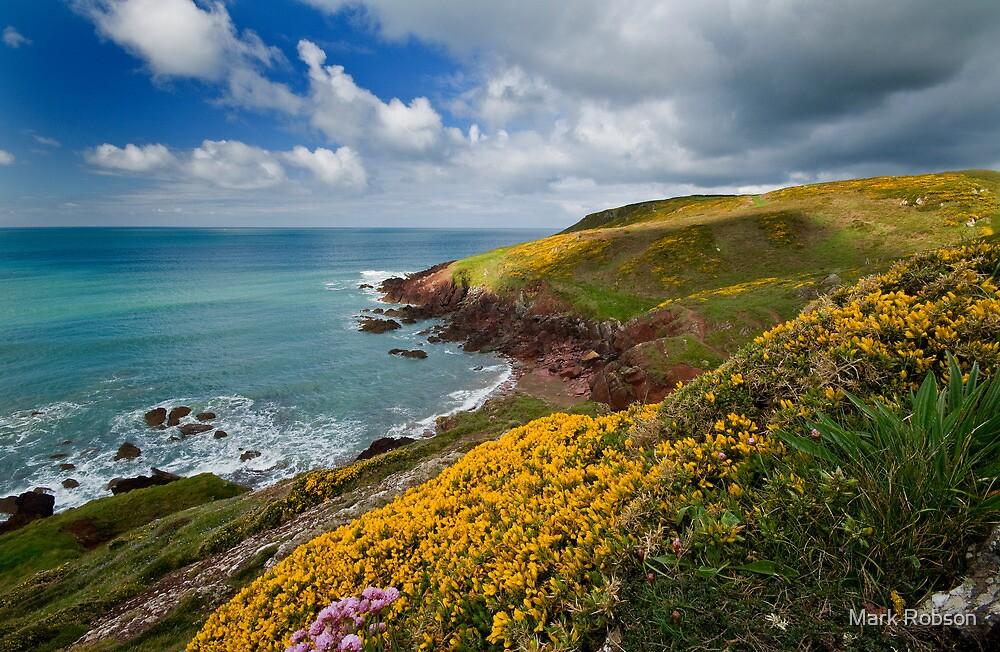 Pembrokeshire Coast Path by Mark Robson