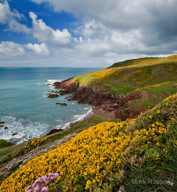 Pembrokeshire Coast Path by Mark Robson