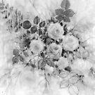 « Pluie sur les roses en noir et blanc » par Fabienne Monestier