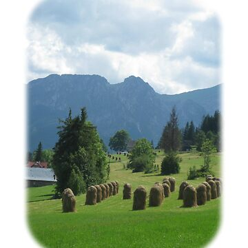 Tranquil Tatra Mountains Hayfield by DAscroft