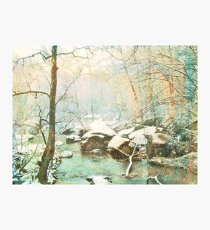 Winter's Kiss Photographic Print