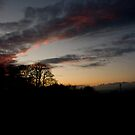 January Sunset by Alice Oates