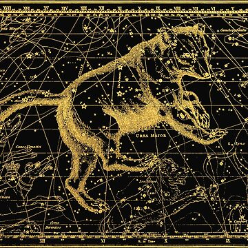 Ursa Major Great Bear Constellation, Astronomy Vintage Drawing from 1820 by MySunLife
