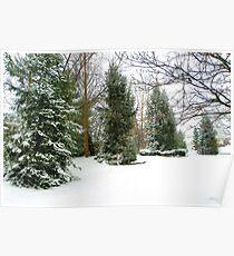 First Snowfall of Season! Poster